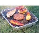 Barbecue-au-charbon-de-bois-Instant-Grill
